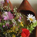 bouquet-talus