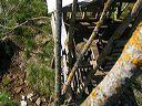 le ruisseau sous la cabane