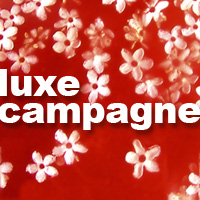 Luxe Campagne