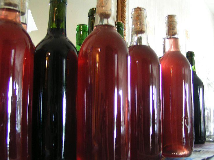 vin de sureau